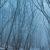Мистически красивые туманы региона Кавказских Минеральных Вод