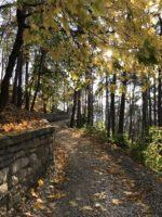 Лечебный парк и терренкуры Кисловодска