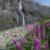 Путешествие к Мидаграбинским водопадам